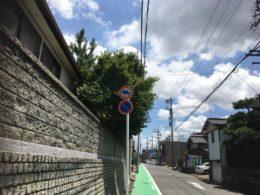 道路や隣家に越境した庭木の剪定 作業前