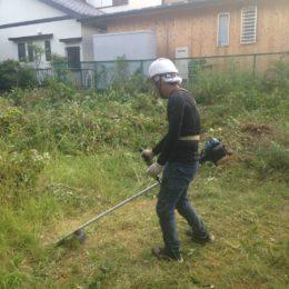 草刈り作業の様子