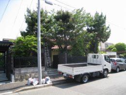 お庭すっきりプラン 愛知県名古屋市 伐採作業前