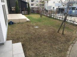 草取り 草刈り 庭 家2