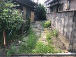 中川区 草刈り 作業前